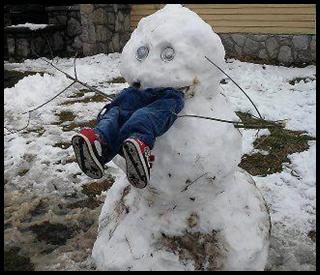 雪だるまA,写真
